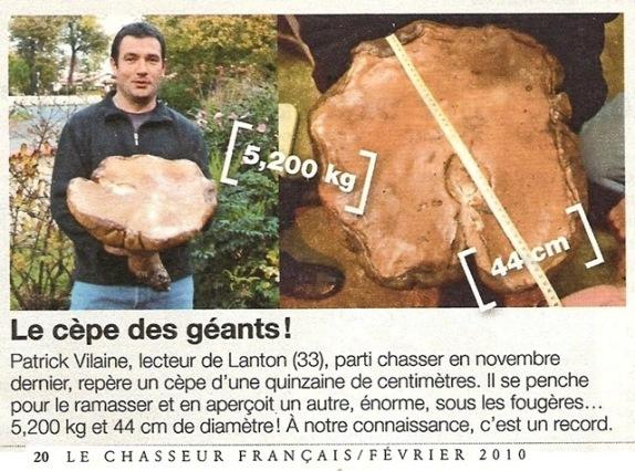 néééénorme cèpe à lanton