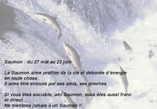 06 saumon