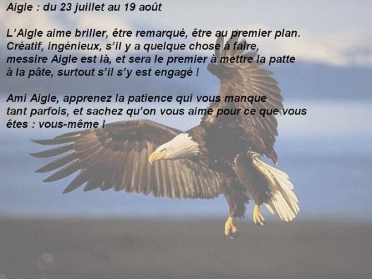 08 aigle