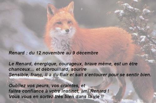 12 renard