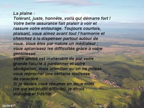 07 plaine