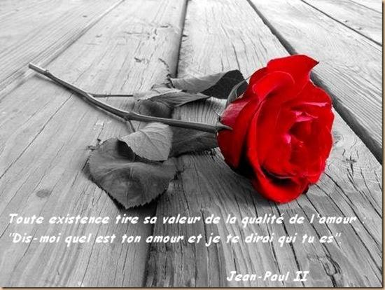 rose citation amour