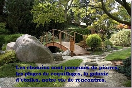 Citation de Sheila