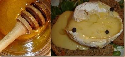 camenbert miel de pissenlit
