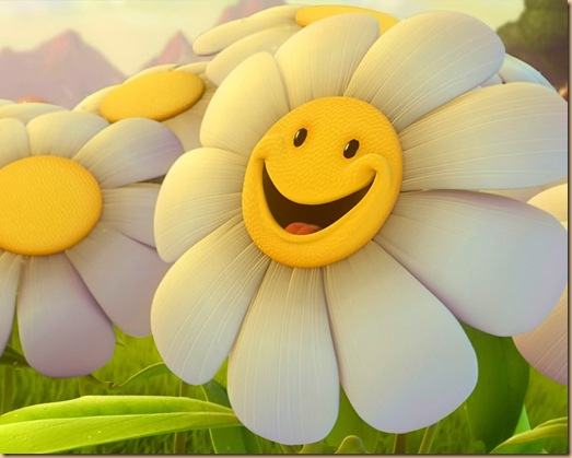 smiley marguerite